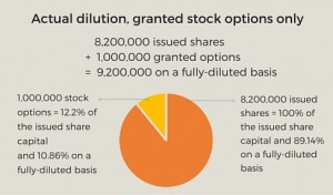 how to set up a stock option plan